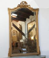 Decorative 19th Century Louis 16 Style Gilt Mirror